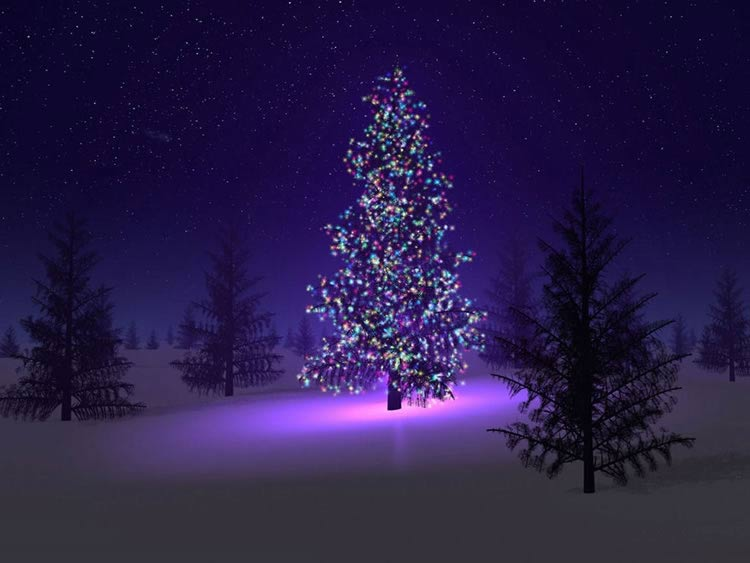 Jour 15: Joyeux Noël en conscience