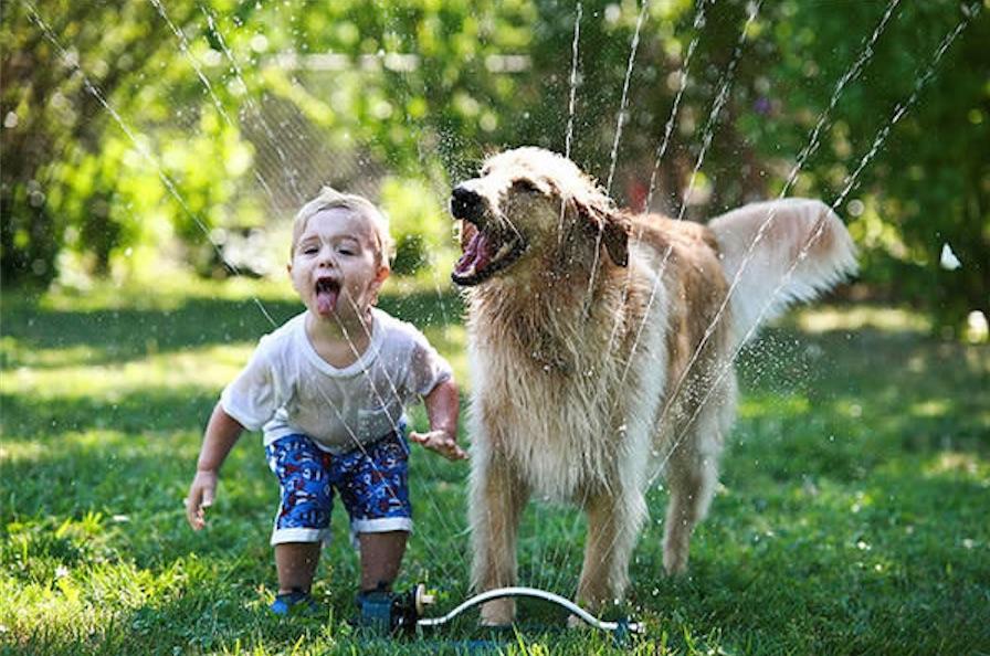 photo-adorable-enfants-et-animaux-de-compagnies-004